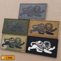 UK Duke of Lancaster's Regiment The Lion's of England's Tactical Recognition Flash British Army Velcro© Patch